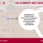 Collegamenti aree basilicali